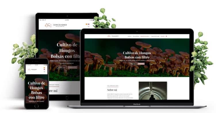 "Premio ""A crear"" mejor web 2019"